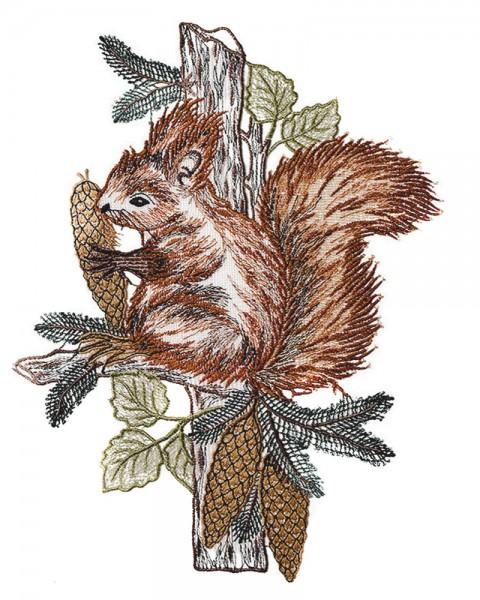 Fensterbild Eichhörnchen
